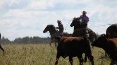 Cowboy roping a bull - stock footage
