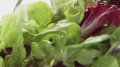 Tossing mixed salad leaves Stock Footage