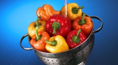 Washing peppers in a colander Stock Footage