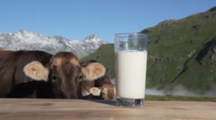 A glass of milk and cows, mountains in background Stock Footage