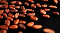 Spilling cocoa beans Stock Footage