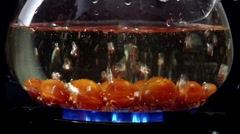 Dropping tomatoes into boiling water Stock Footage