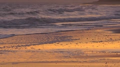 A sunset sky reflected in waves as they break on the shoreline Stock Footage