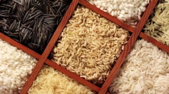 Various types of rice in a sprouting box Stock Footage