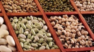 Stock Video Footage of Various pulses in type case