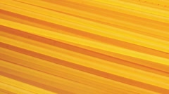 Spaghetti (full-frame) Stock Footage