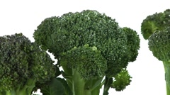 Broccoli florets standing up Stock Footage