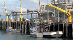 Cranes at the commercial fishing dock Stock Footage