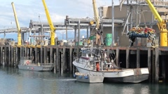 Cranes at the commercial fishing dock #2 Stock Footage