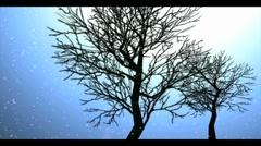 Snowfall 1b Stock Footage