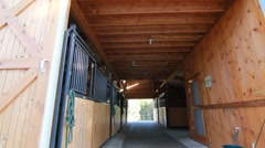 Barn stables horse Stock Footage