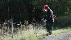 Man clearing the wayside of a narrow country lane with a string trimmer. Stock Footage