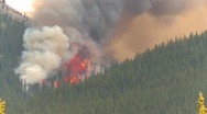 Mountain forest fire, Mt Buller #16, huge flames Stock Footage
