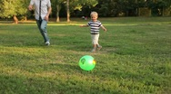 Stock Video Footage of Father and son playing ball in the meadow