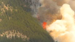 Mountain forest fire, Mt Buller #38, huge 150' flames and smoke Stock Footage