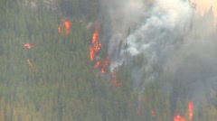 Stock Video Footage of Mountain forest fire, Mt Buller #46, helicopter torcher huge 300' flames.