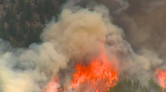 Mountain forest fire, Mt Buller #53, massive flames Stock Footage