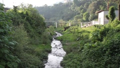 Creek flowing past lush greenery and buildings Stock Footage