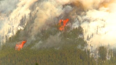 Mountain forest fire, Mt Buller #60, huge flames and smoke Stock Footage