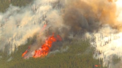Mountain forest fire, Mt Buller #64, huge flames and smoke - stock footage