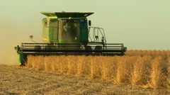 Harvesting soybeans with a combine - stock footage