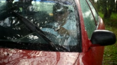 Car in the rain with the wipers included Stock Footage