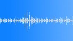 BeeBuzz BU01.18 Äänitehoste