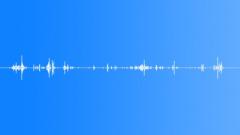 InsectMoveSlimy BU01.298 Sound Effect
