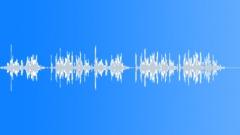 InsectRattleBug BU01.328 Sound Effect