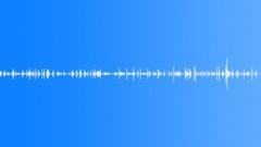 InsectWalkDirt BU01.446 Sound Effect