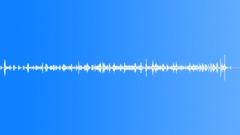 Stock Sound Effects of SpiderTarantula BU01.608