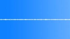 Termites BU01.637 - sound effect
