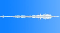 WaspTrapped BU01.651 Sound Effect