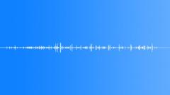 Stock Sound Effects of WormCrawl BU01.667