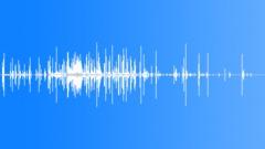 DebrisLimaBeans S011TX.253 Sound Effect