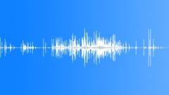 DebrisLimaBeans S011TX.257 Sound Effect