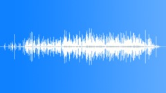 DebrisLimaBeans S011TX.259 Sound Effect