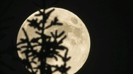 Stock Video Footage of Full moonrise, time lapse - slow