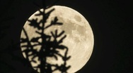 Stock Video Footage of Full moonrise, time lapse - fast