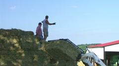 Farmers Loading Hay 03 Stock Footage