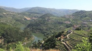 Vineyards and Douro River between hills Stock Footage