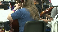 Back view of string instruments being played Stock Footage