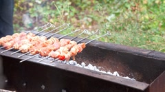 Barbeque. Stock Footage