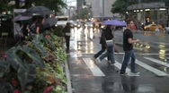 Stock Video Footage of Rainy New York Crosswalk