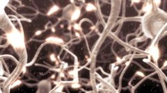 Active nerve cell in human neural system - stock footage