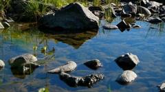 Teletskoe lake 5, Altai, Russia - stock footage