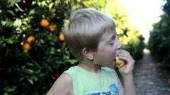 Juicy taste of summer in orange grove Stock Footage