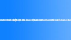 AIROPLANE BOEING 767 CRUISING HEIGHT INTERIOR TOILET DOOR LATCH Sound Effect