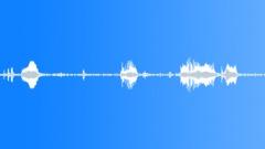 ANIMAL ALPACA MALE GRUMBLE04 Sound Effect