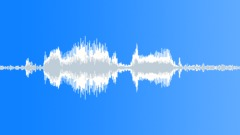ANIMAL ALPACA MALE GRUMBLE10 - sound effect